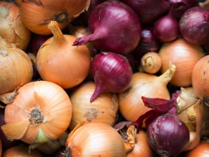 fresh and ripe onions in market as a background